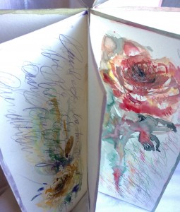 Nel giardino delle rose - Diana Isa Vallini